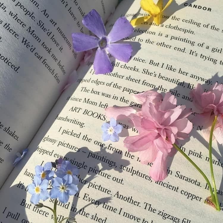 MUST-READ: 5 книг на лето