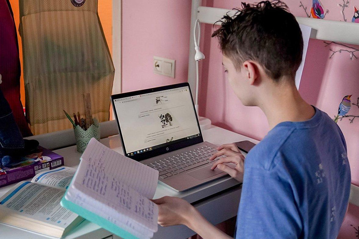 Чем обусловлена популярность онлайн-школ для подготовки к экзаменам в России?